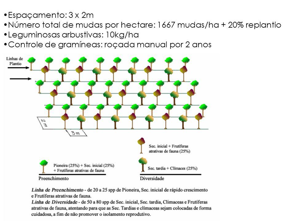 Espaçamento: 3 x 2m Número total de mudas por hectare: 1667 mudas/ha + 20% replantio Leguminosas arbustivas: 10kg/ha Controle de gramíneas: roçada manual por 2 anos