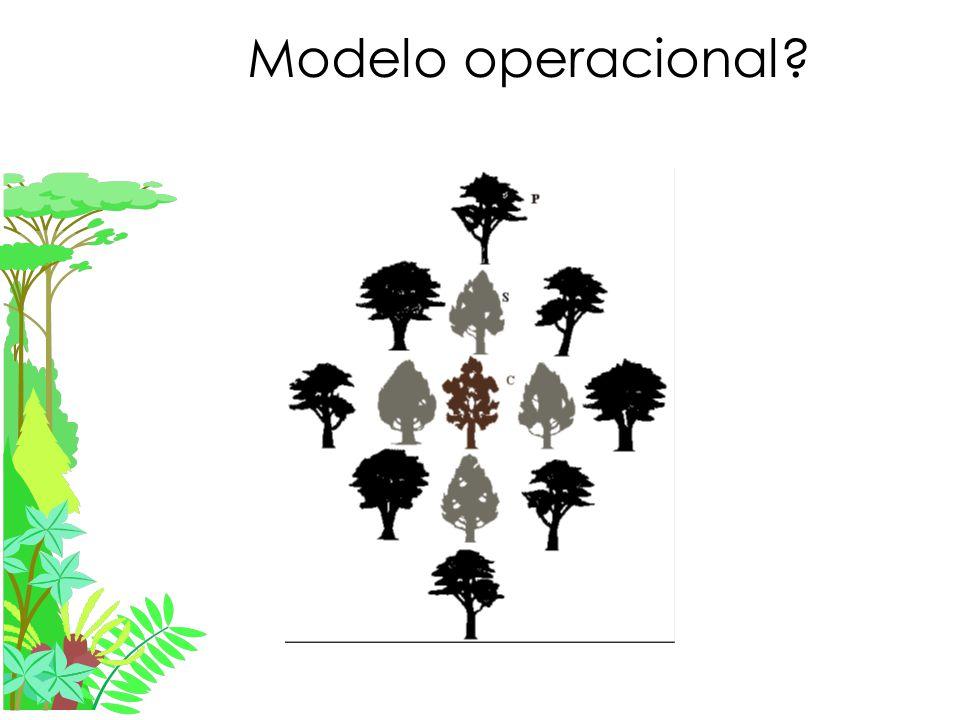 Modelo operacional?