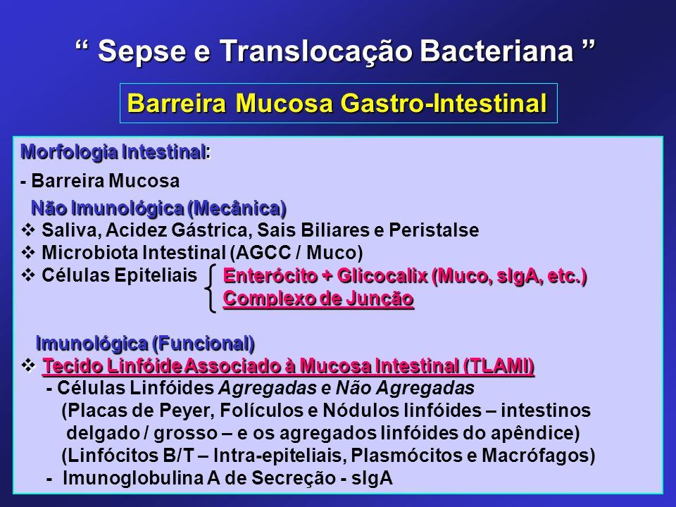 Morfologia Intestinal: - Barreira Mucosa Não Imunológica (Mecânica) Não Imunológica (Mecânica)  Saliva, Acidez Gástrica, Sais Biliares e Peristalse 