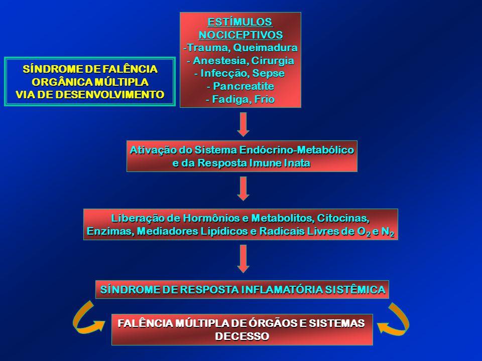 ESTÍMULOSNOCICEPTIVOS -Trauma, Queimadura - Anestesia, Cirurgia - Infecção, Sepse - Pancreatite - Fadiga, Frio Ativação do Sistema Endócrino-Metabólic