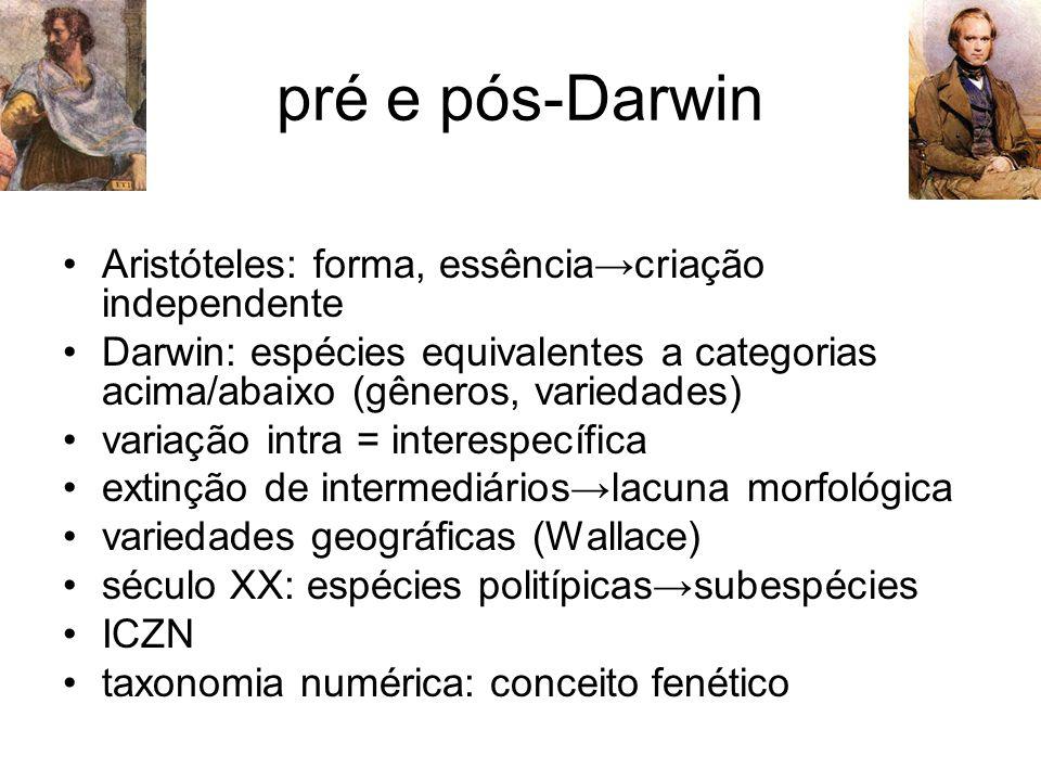 pré e pós-Darwin Aristóteles: forma, essência→criação independente Darwin: espécies equivalentes a categorias acima/abaixo (gêneros, variedades) varia