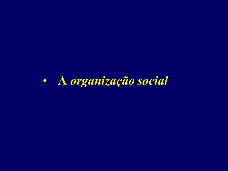 A organização socialA organização social