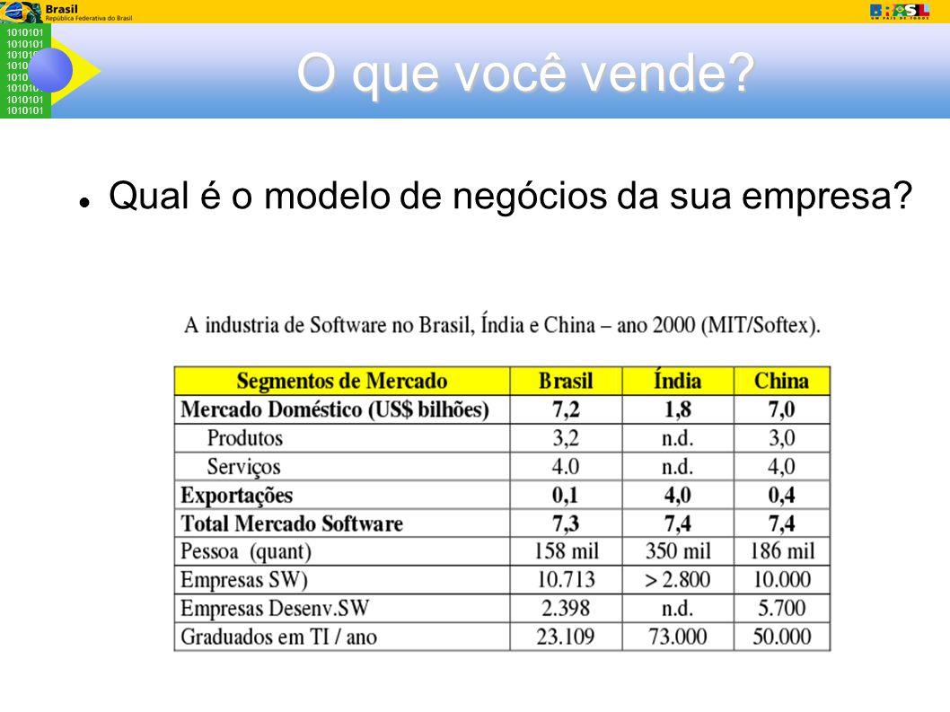 1010101 O que você vende? Qual é o modelo de negócios da sua empresa?