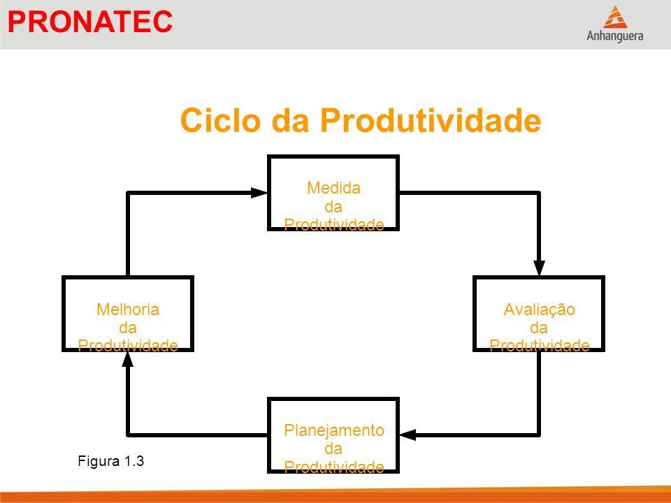Ciclo da Produtividade Medida da Produtividade Planejamento da Produtividade Avaliação da Produtividade Melhoria da Produtividade Figura 1.3 PRONATEC