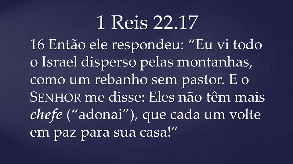 """16 Então ele respondeu: """"Eu vi todo o Israel disperso pelas montanhas, como um rebanho sem pastor. E o S ENHOR me disse: Eles não têm mais chefe (""""ado"""