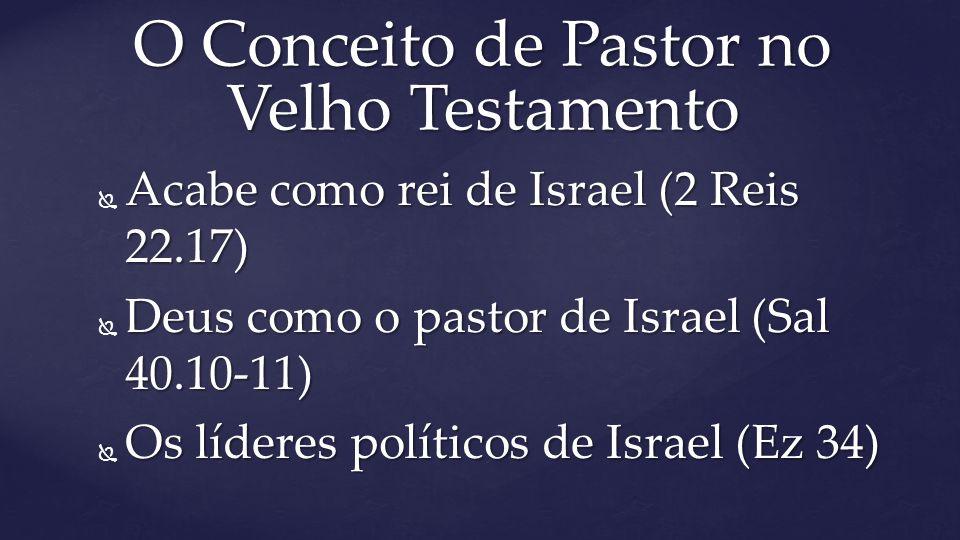  Acabe como rei de Israel (2 Reis 22.17)  Deus como o pastor de Israel (Sal 40.10-11)  Os líderes políticos de Israel (Ez 34) O Conceito de Pastor