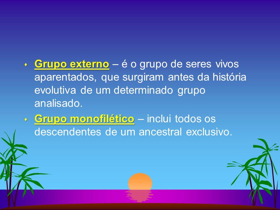 s Grupo externo s Grupo externo – é o grupo de seres vivos aparentados, que surgiram antes da história evolutiva de um determinado grupo analisado. s