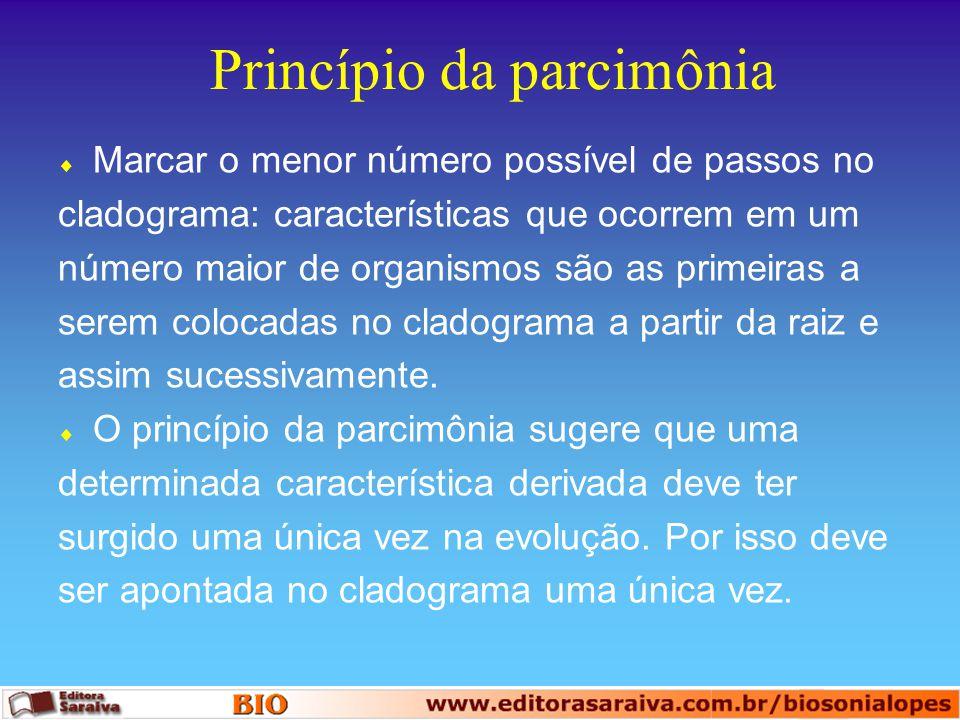 Princípio da parcimônia  Marcar o menor número possível de passos no cladograma: características que ocorrem em um número maior de organismos são as