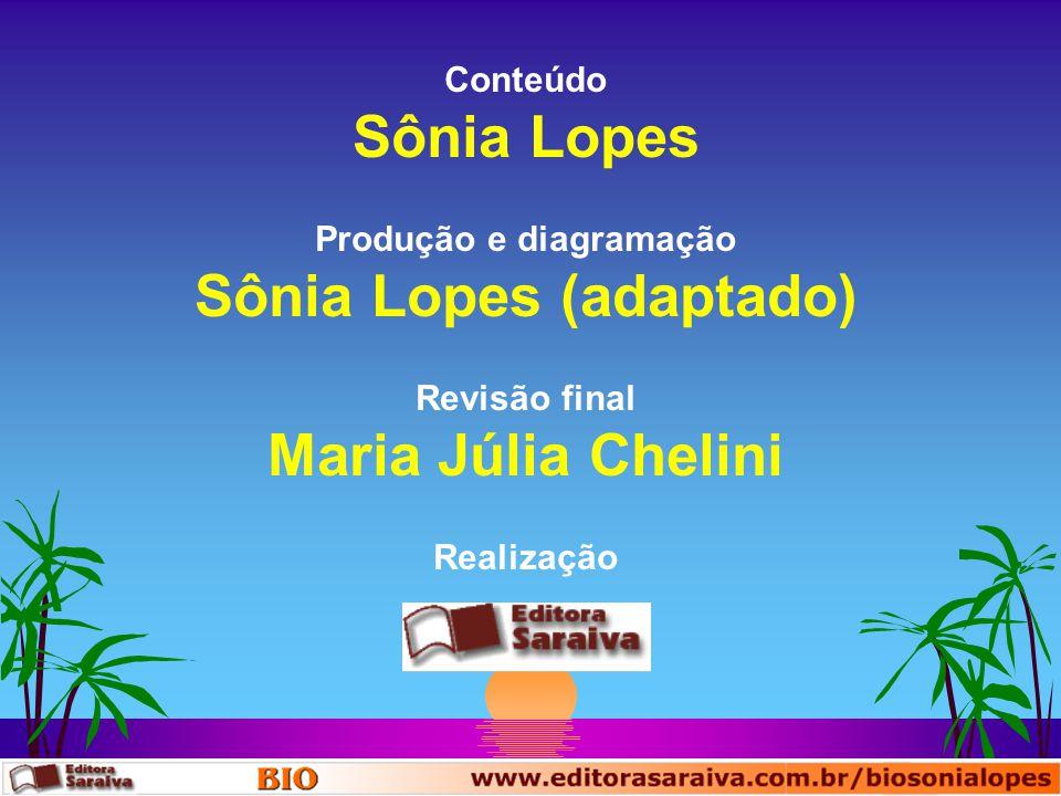 Conteúdo Sônia Lopes Realização Produção e diagramação Sônia Lopes (adaptado) Revisão final Maria Júlia Chelini