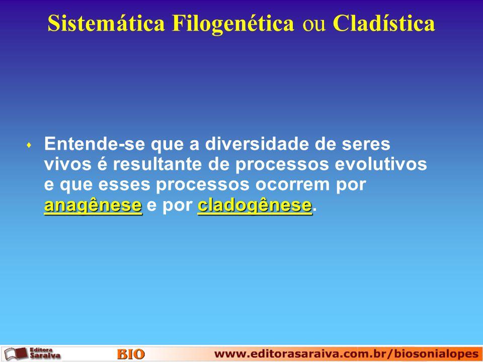 Sistemática Filogenética ou Cladística anagênesecladogênese s Entende-se que a diversidade de seres vivos é resultante de processos evolutivos e que e