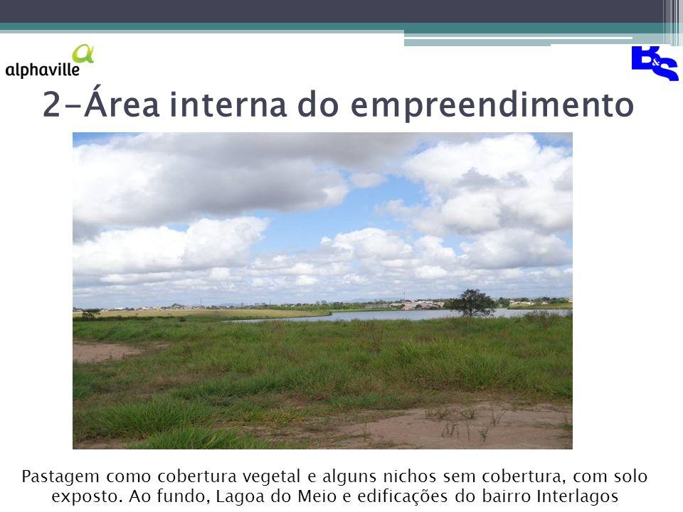 2-Área interna do empreendimento Pastagem como cobertura vegetal e alguns nichos sem cobertura, com solo exposto.