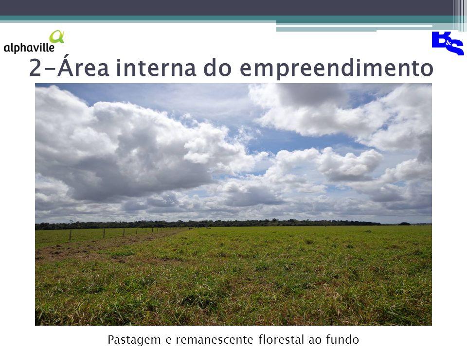 2-Área interna do empreendimento Pastagem e remanescente florestal ao fundo