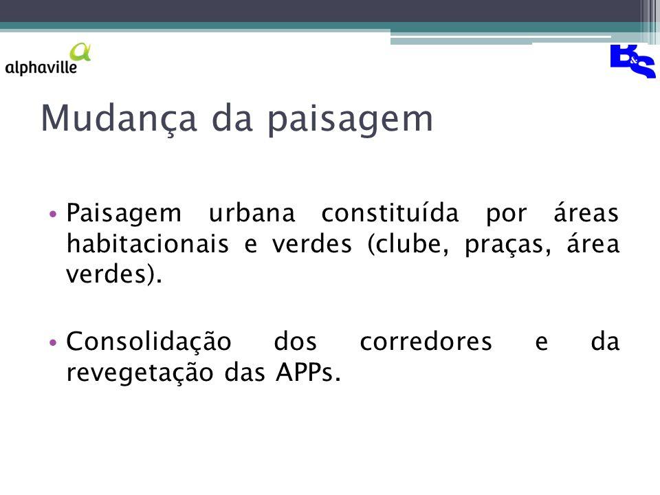 Mudança da paisagem Paisagem urbana constituída por áreas habitacionais e verdes (clube, praças, área verdes).