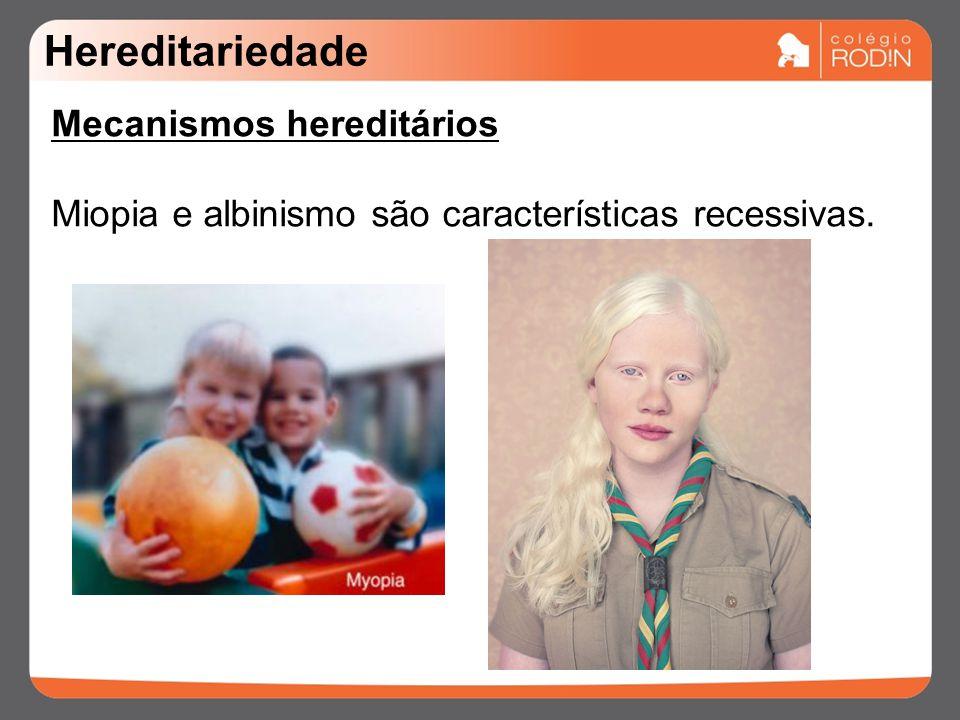 Hereditariedade Mecanismos hereditários Miopia e albinismo são características recessivas.