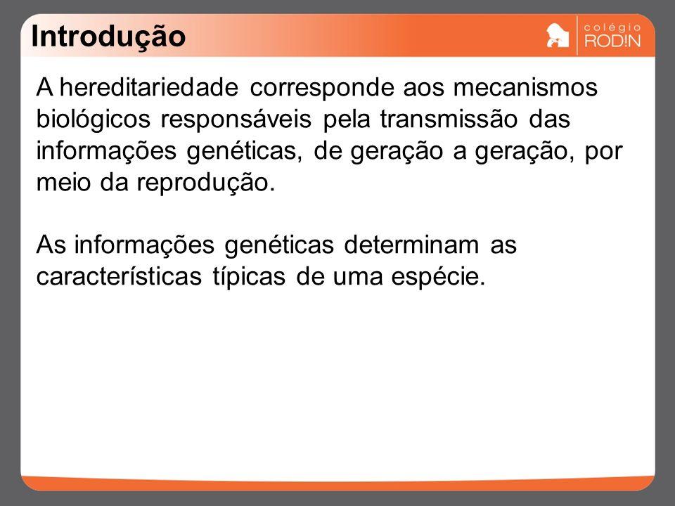 Introdução A hereditariedade corresponde aos mecanismos biológicos responsáveis pela transmissão das informações genéticas, de geração a geração, por meio da reprodução.