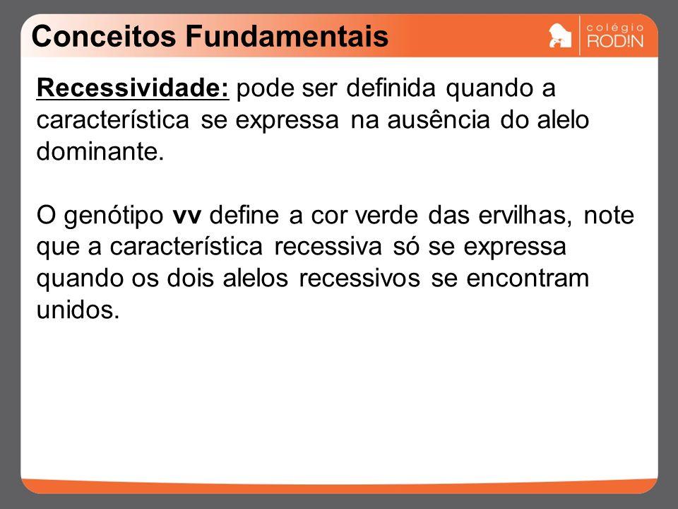 Conceitos Fundamentais Recessividade: pode ser definida quando a característica se expressa na ausência do alelo dominante.