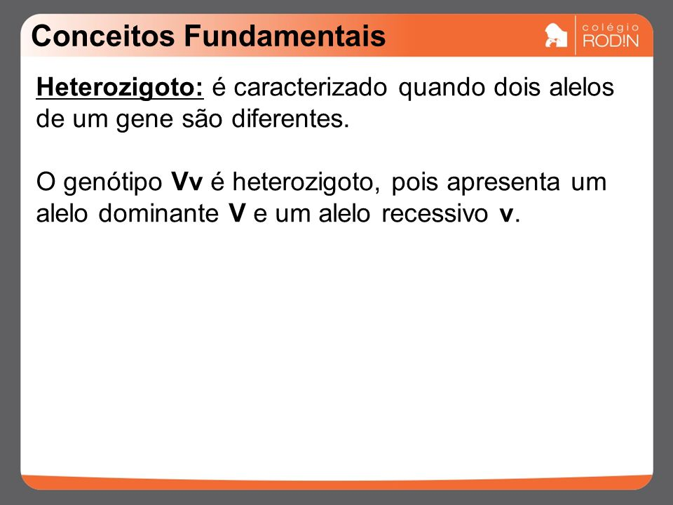 Conceitos Fundamentais Heterozigoto: é caracterizado quando dois alelos de um gene são diferentes.