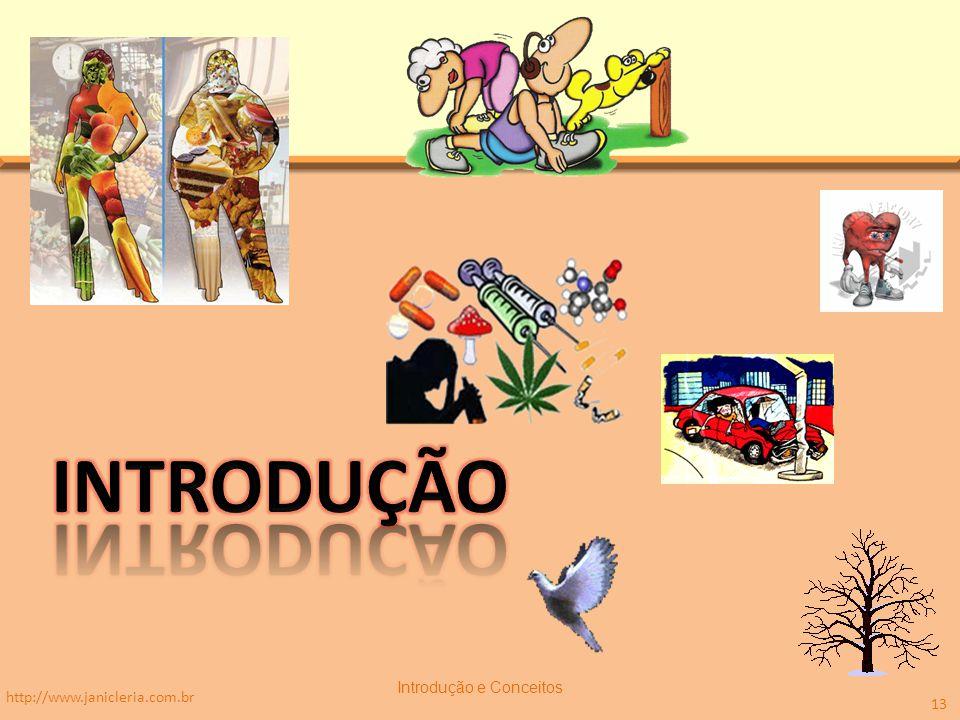 http://www.janicleria.com.br Introdução e Conceitos 13