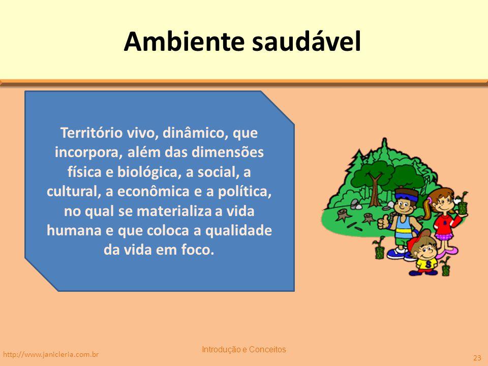Ambiente saudável http://www.janicleria.com.br Introdução e Conceitos 23 Território vivo, dinâmico, que incorpora, além das dimensões física e biológica, a social, a cultural, a econômica e a política, no qual se materializa a vida humana e que coloca a qualidade da vida em foco.