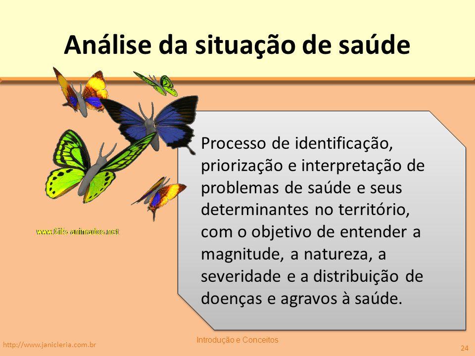 Análise da situação de saúde http://www.janicleria.com.br Introdução e Conceitos 24 Processo de identificação, priorização e interpretação de problema