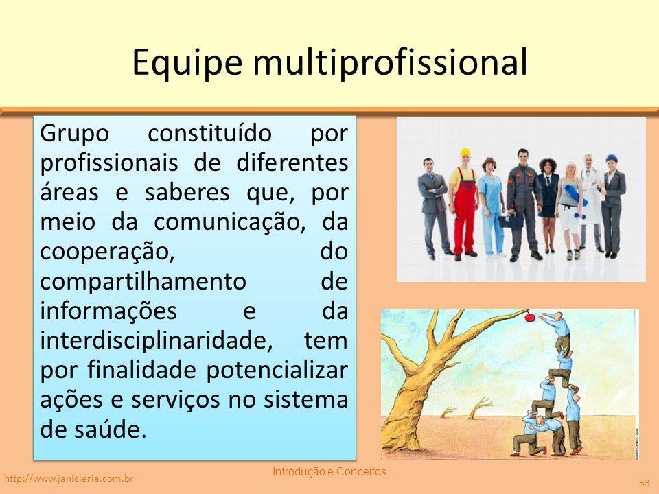 Equipe multiprofissional Grupo constituído por profissionais de diferentes áreas e saberes que, por meio da comunicação, da cooperação, do compartilha