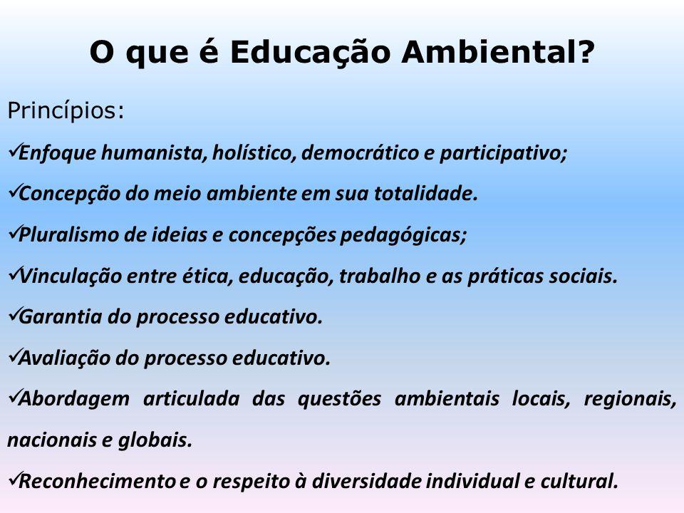 O que é Educação Ambiental? Princípios: Enfoque humanista, holístico, democrático e participativo; Concepção do meio ambiente em sua totalidade. Plura