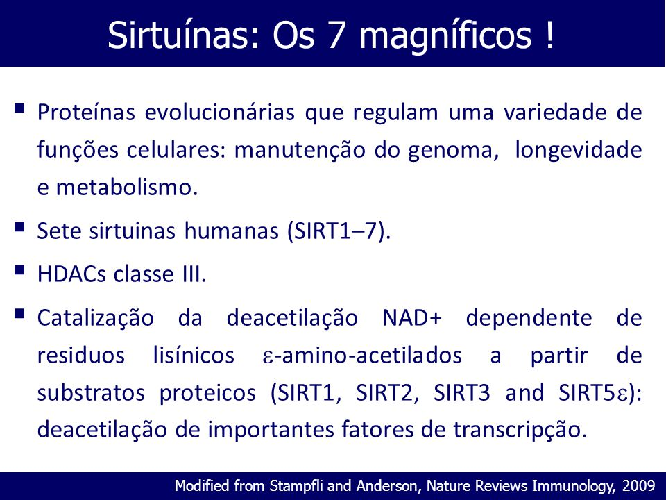 Sirtuínas: Os 7 magníficos ! Modified from Stampfli and Anderson, Nature Reviews Immunology, 2009  Proteínas evolucionárias que regulam uma variedade