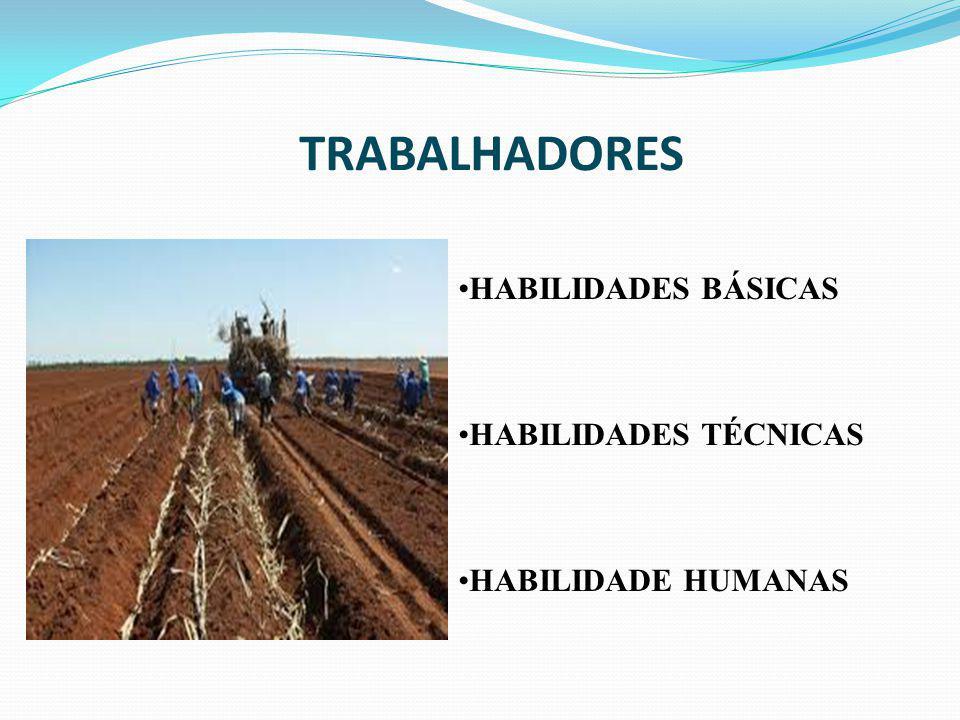 TRABALHADORES HABILIDADES BÁSICAS HABILIDADES TÉCNICAS HABILIDADE HUMANAS