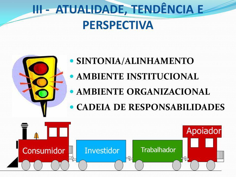 III - ATUALIDADE, TENDÊNCIA E PERSPECTIVA SINTONIA/ALINHAMENTO AMBIENTE INSTITUCIONAL AMBIENTE ORGANIZACIONAL CADEIA DE RESPONSABILIDADES Consumidor I