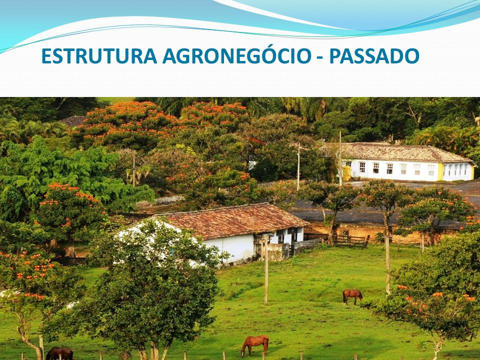 ESTRUTURA AGRONEGÓCIO - PASSADO