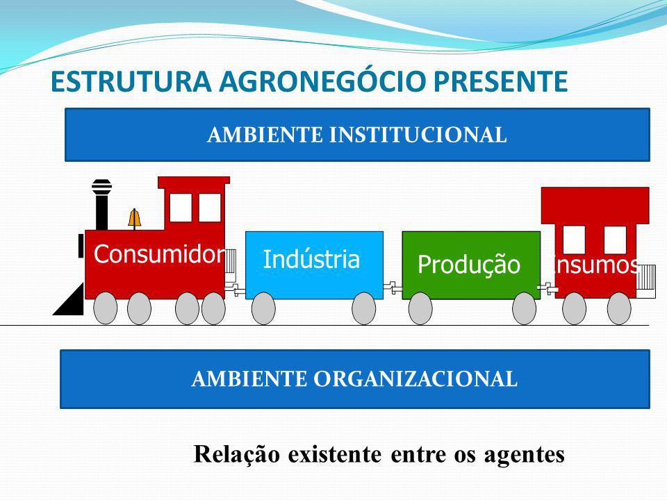 ESTRUTURA AGRONEGÓCIO PRESENTE Consumidor Indústria ProduçãoInsumos AMBIENTE INSTITUCIONAL AMBIENTE ORGANIZACIONAL Relação existente entre os agentes