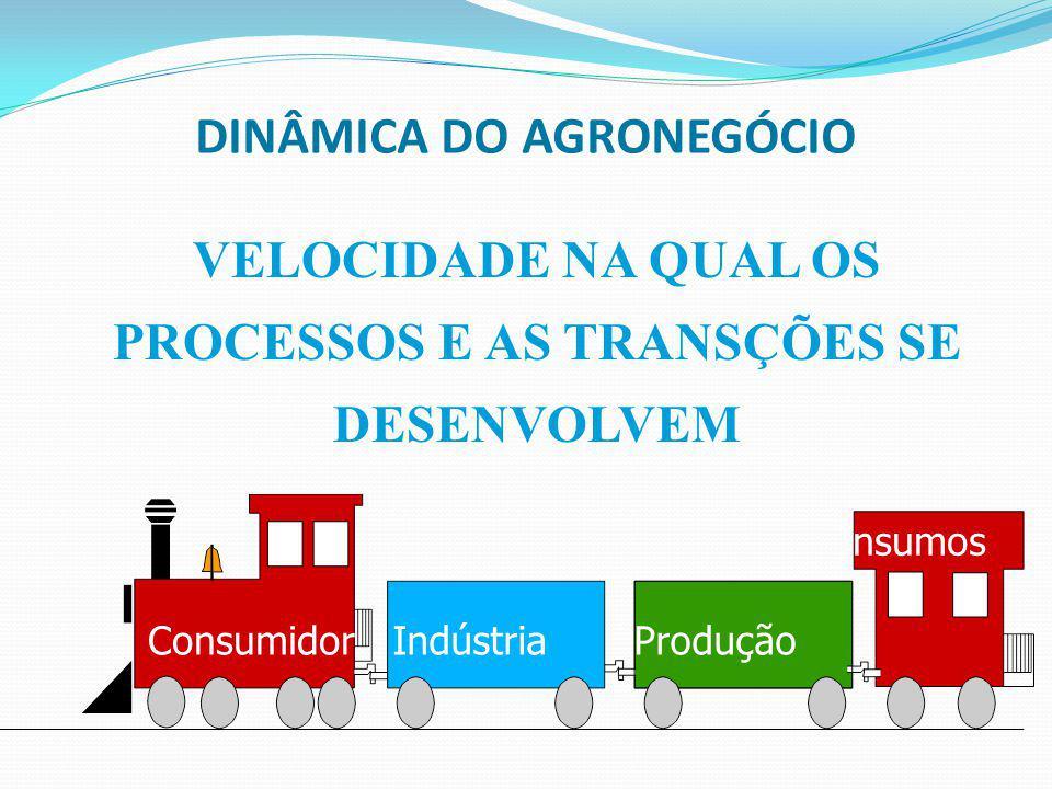 DINÂMICA DO AGRONEGÓCIO VELOCIDADE NA QUAL OS PROCESSOS E AS TRANSÇÕES SE DESENVOLVEM Consumidor IndústriaProdução Insumos