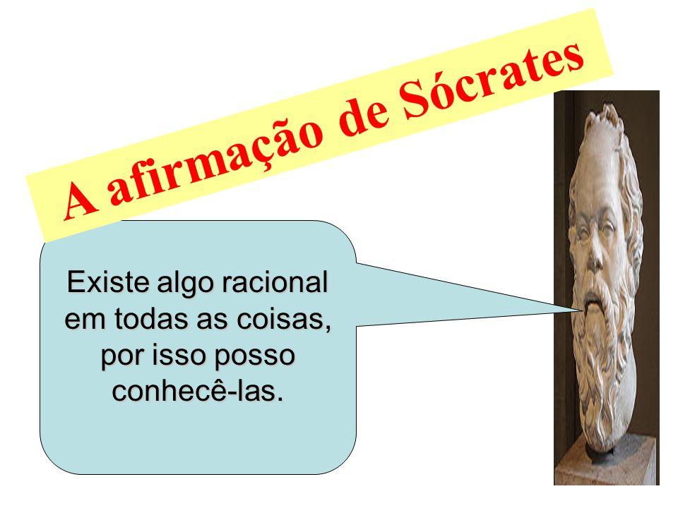 Existe algo racional em todas as coisas, por isso posso conhecê-las. A afirmação de Sócrates