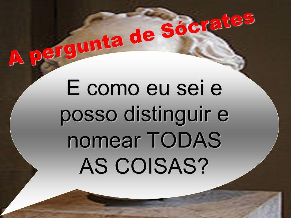 E como eu sei e posso distinguir e nomear TODAS AS COISAS? A pergunta de Sócrates