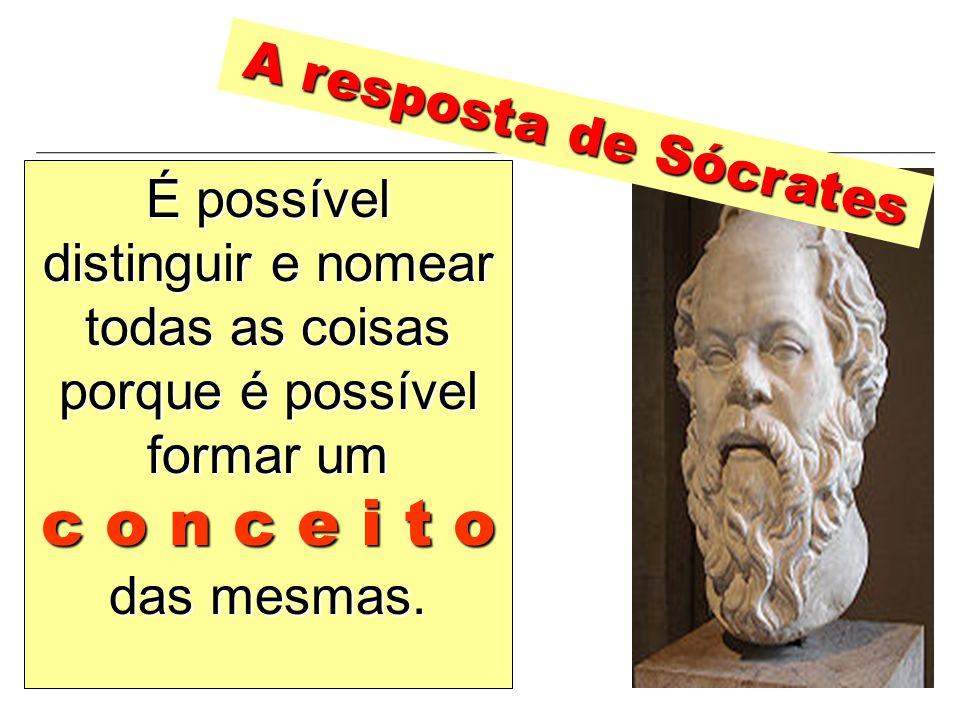 É possível distinguir e nomear todas as coisas porque é possível formar um c o n c e i t o das mesmas. A resposta de Sócrates