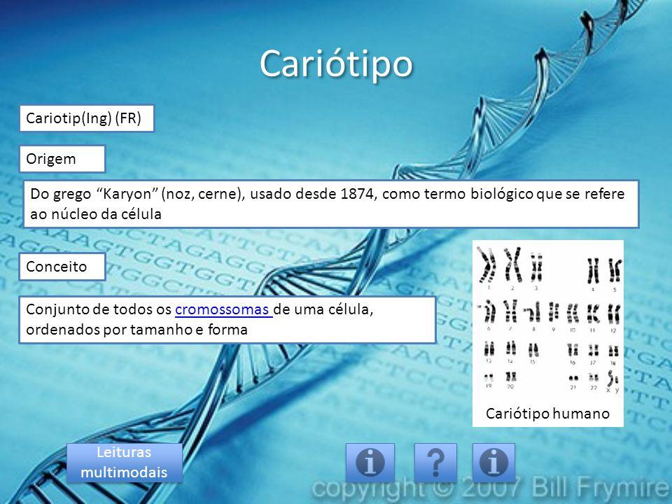 """Cariótipo Cariotip(Ing) (FR) Origem Conjunto de todos os cromossomas de uma célula, ordenados por tamanho e formacromossomas Conceito Do grego """"Karyon"""