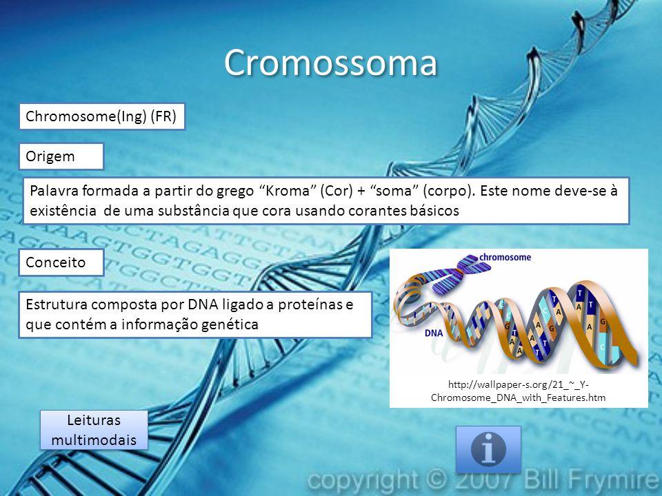 Cromossoma Chromosome(Ing) (FR) Origem Estrutura composta por DNA ligado a proteínas e que contém a informação genética Conceito Palavra formada a partir do grego Kroma (Cor) + soma (corpo).
