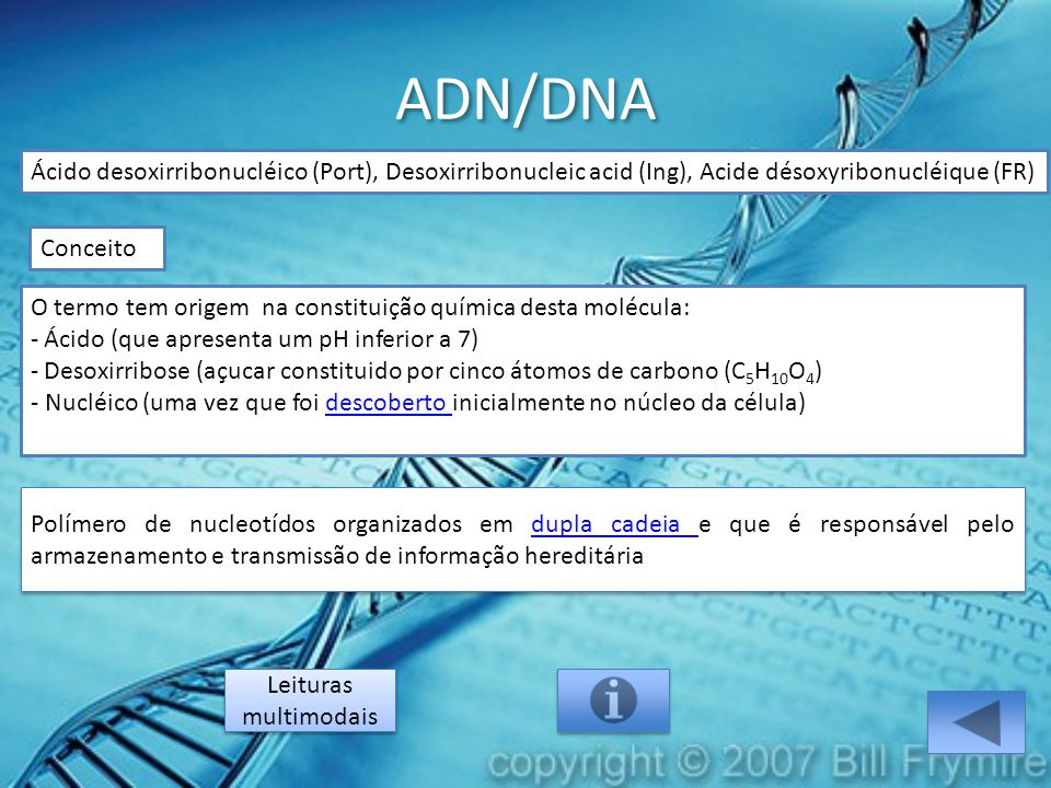 ADN/DNA Ácido desoxirribonucléico (Port), Desoxirribonucleic acid (Ing), Acide désoxyribonucléique (FR) O termo tem origem na constituição química des