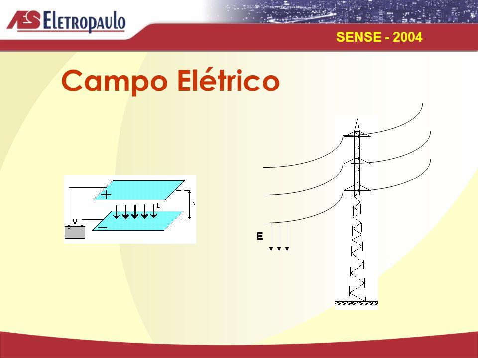 SENSE - 2004 E Campo Elétrico