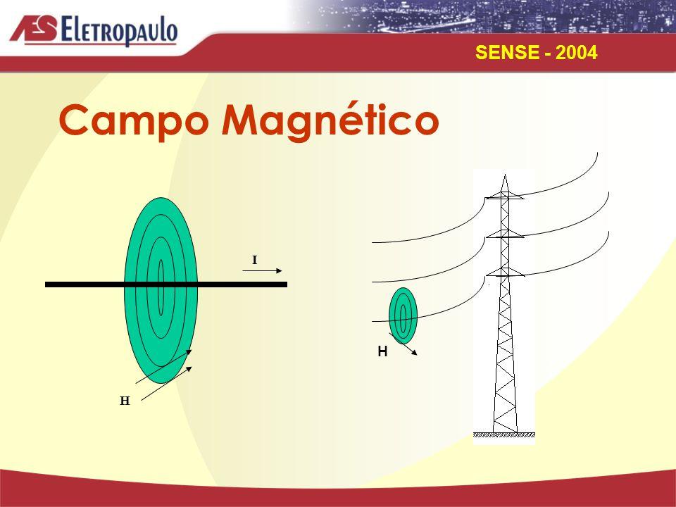 SENSE - 2004 I H H Campo Magnético