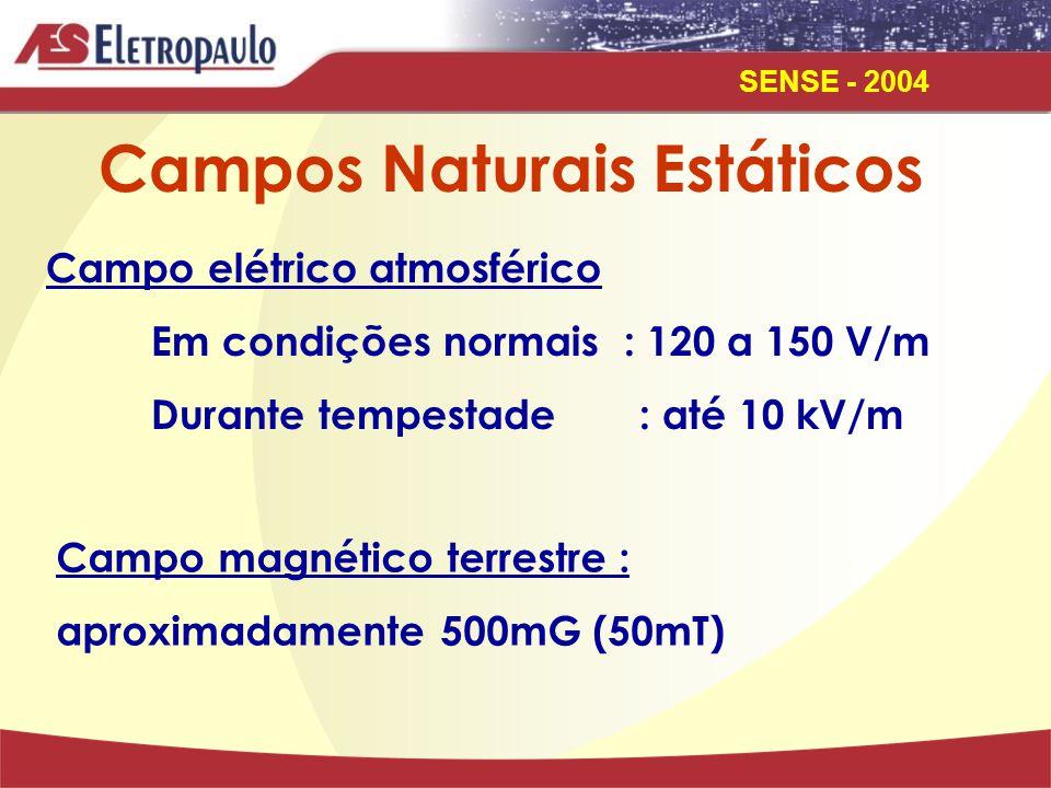 SENSE - 2004 Campos Naturais Estáticos Campo elétrico atmosférico Em condições normais : 120 a 150 V/m Durante tempestade : até 10 kV/m Campo magnético terrestre : aproximadamente 500mG (50mT)