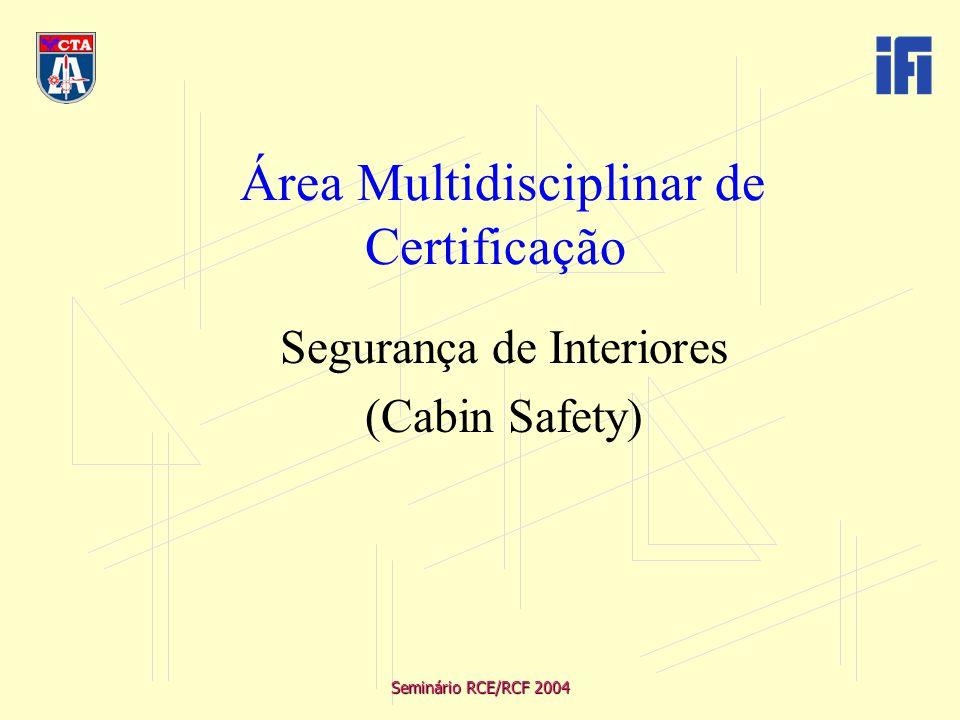 Seminário RCE/RCF 2004 Visão e trabalho no conceito sistêmico/matricial Interface com outras disciplinas de certificação de aeronaves