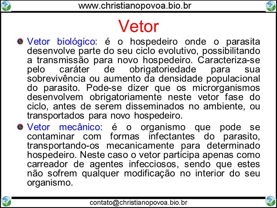 Vetor Vetor biológico: é o hospedeiro onde o parasita desenvolve parte do seu ciclo evolutivo, possibilitando a transmissão para novo hospedeiro.