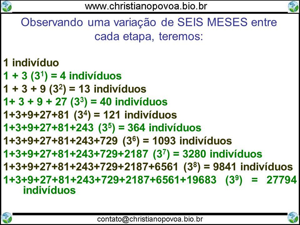 1 indivíduo 1 + 3 (3 1 ) = 4 indivíduos 1 + 3 + 9 (3 2 ) = 13 indivíduos 1+ 3 + 9 + 27 (3 3 ) = 40 indivíduos 1+3+9+27+81 (3 4 ) = 121 indivíduos 1+3+9+27+81+243 (3 5 ) = 364 indivíduos 1+3+9+27+81+243+729 (3 6 ) = 1093 indivíduos 1+3+9+27+81+243+729+2187 (3 7 ) = 3280 indivíduos 1+3+9+27+81+243+729+2187+6561 (3 8 ) = 9841 indivíduos 1+3+9+27+81+243+729+2187+6561+19683 (3 9 ) = 27794 indivíduos Observando uma variação de SEIS MESES entre cada etapa, teremos: