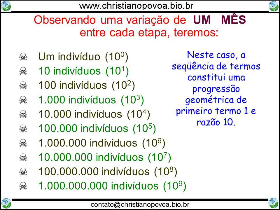 Observando uma variação de UM MÊS entre cada etapa, teremos: Um indivíduo (10 0 ) 10 indivíduos (10 1 ) 100 indivíduos (10 2 ) 1.000 indivíduos (10 3 ) 10.000 indivíduos (10 4 ) 100.000 indivíduos (10 5 ) 1.000.000 indivíduos (10 6 ) 10.000.000 indivíduos (10 7 ) 100.000.000 indivíduos (10 8 ) 1.000.000.000 indivíduos (10 9 ) Neste caso, a seqüência de termos constitui uma progressão geométrica de primeiro termo 1 e razão 10.