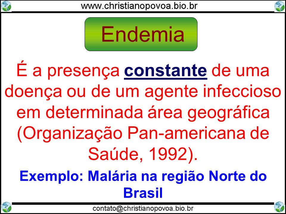 Denominação da ocorrência de doença em grande número de pessoas ao mesmo tempo (ROUQUAYROL, 1993) Exemplo: Dengue no centro-oeste em meses de maior incidência de chuvas Epidemia