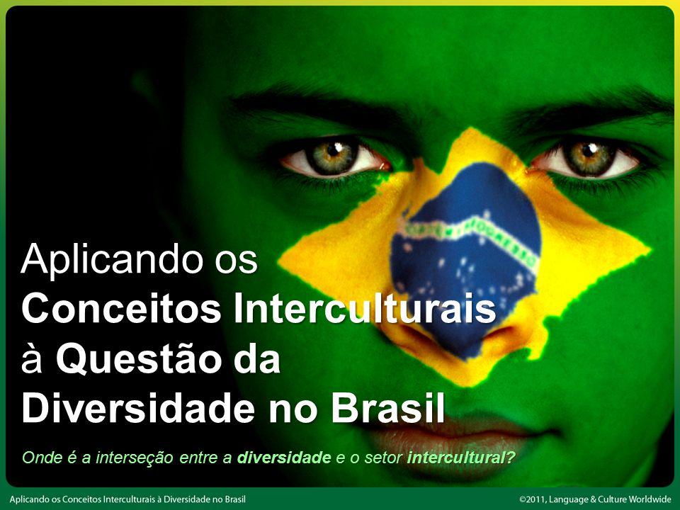 Onde é a interseção entre a diversidade e o setor intercultural.