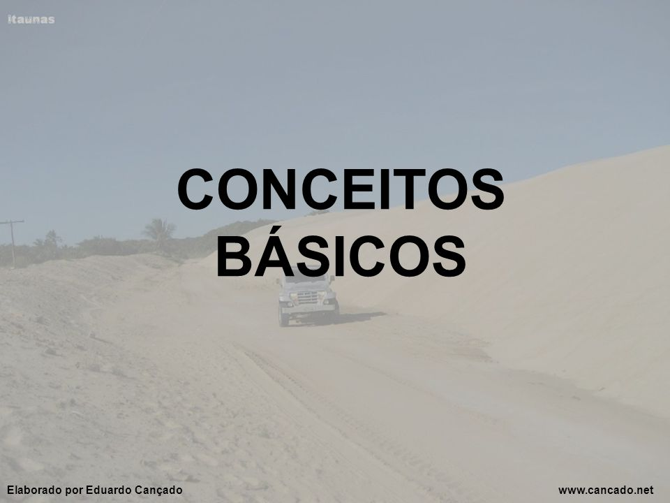 CONCEITOS BÁSICOS Elaborado por Eduardo Cançado www.cancado.net