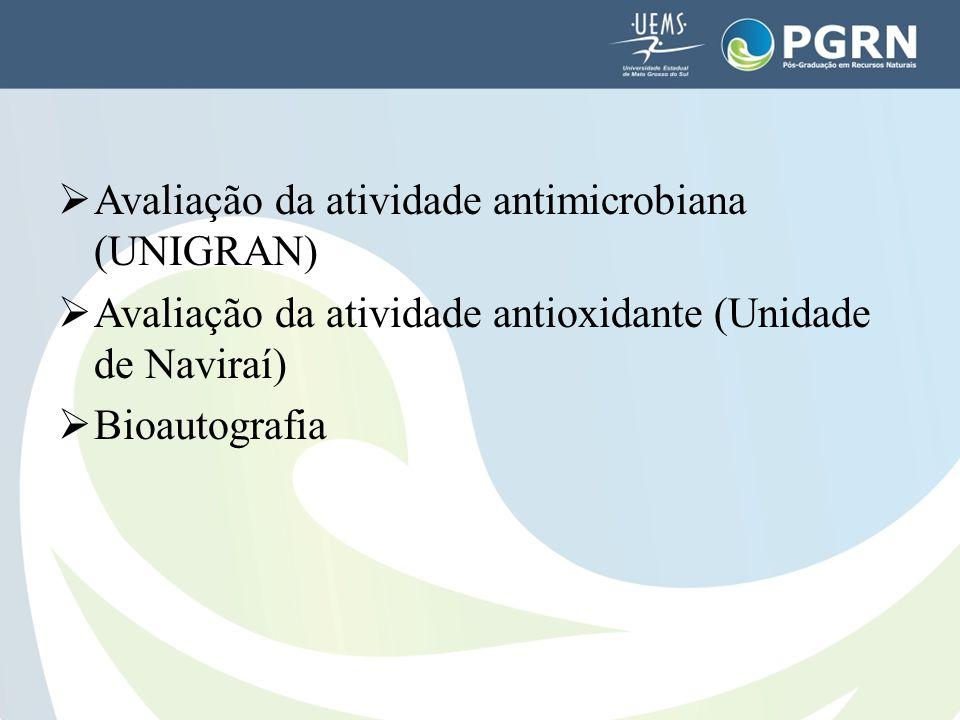 Avaliação da atividade antimicrobiana (UNIGRAN)  Avaliação da atividade antioxidante (Unidade de Naviraí)  Bioautografia