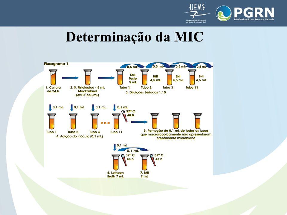 Determinação da MIC